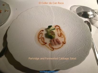 12 Roca Partridge_new.jpg