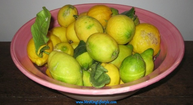 8 La Residencia Lemons_new