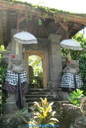 9 Bali Bebek Tepi Sawah_new