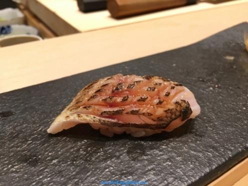 hashida-barracooda_new