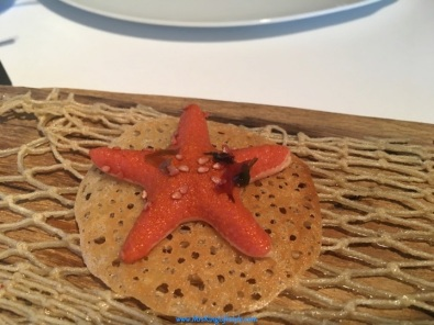 5-can-roca-starfish_new